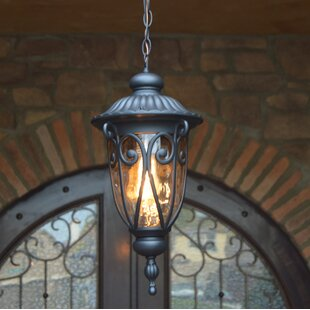 Fleur De Lis Living Grandstaff 1-Light Outdoor Hanging Lantern