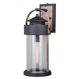 Gracie Oaks Ziegler Outdoor Wall Lantern