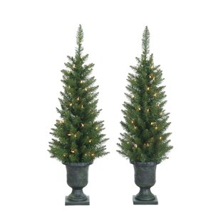 Pre Lit Palm Tree 3 5 Green Cedar Pine Artificial Christmas With 50 Clear White Lights Pot Set Of 2