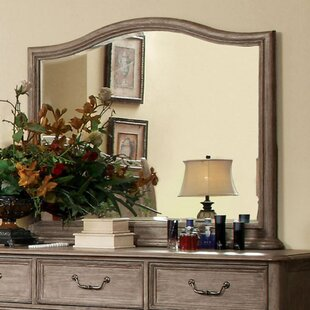 Darby Home Co Bannruod Transitional Accent Mirror