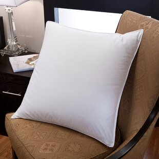 Downlite Down and Feathers European Pillow