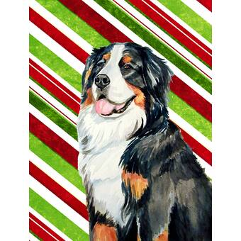 Bernese Mountain Dog Candy Cane Holiday Christmas 2 Sided Garden Flag