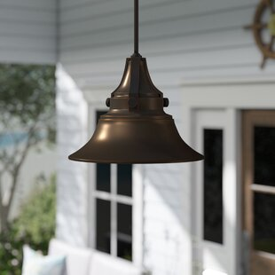 Savings Dowling 1-Light Outdoor Pendant By Beachcrest Home