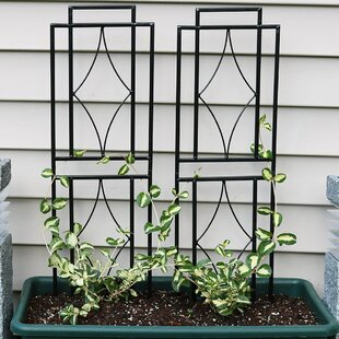Charlton Home Odalys Contemporary Steel Gothic Trellis Set