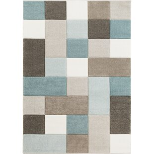 Best Reviews Mott Street Aqua/Dark Brown Area Rug By Wrought Studio
