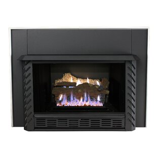 Vent Free Natural Gas/Propane Fireplace Insert By Ashley Hearth
