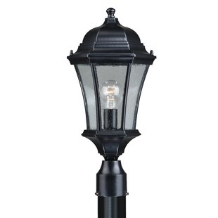 Deals Carnanreagh 1-Light Outdoor Lantern Head By Astoria Grand