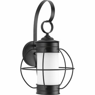 Nayeli 1-Light Wall Lantern by Breakwater Bay