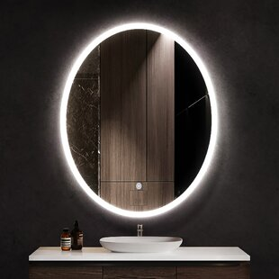 Led Oval Mirrors You Ll Love In 2021 Wayfair