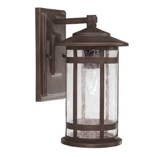 Luiz 1-Light Outdoor Wall Lantern