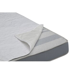 Sertapedic Liner Crib Mattress Pad (Set of 2)