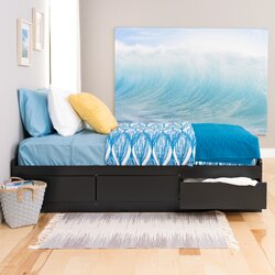 Varick Gallery Valerio Extra Long Twin Platform Bed with Storage ...