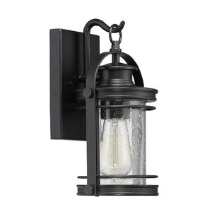 Ashton 1-Light Outdoor Wall Lantern