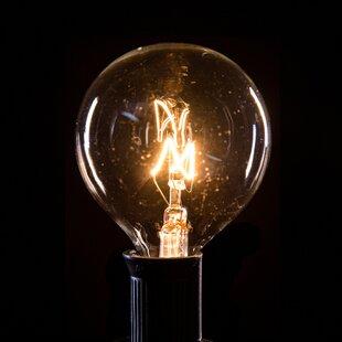 50-Light 50 ft. Globe String Lights By Hometown Evolution, Inc. Outdoor Lighting