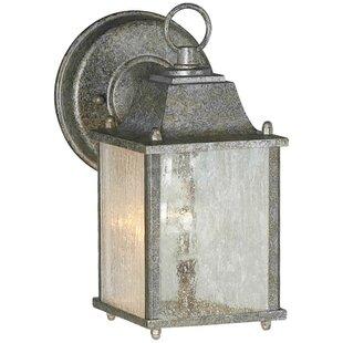 Roseland 1-Light Outdoor Wall Lantern by Breakwater Bay