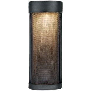 Digirolamo 1-Light Outdoor Flush Mount By Williston Forge Outdoor Lighting