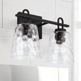 Black Iron Vanity Light Wayfair