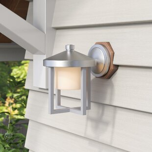 Three Rivers 1-Light Outdoor Wall Lantern