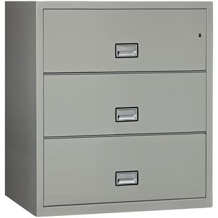 3-Drawer Vertical Filing Cabinet by Phoenix Safe International Best