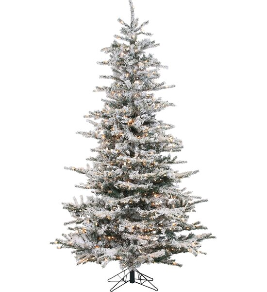 lark manor pre lit 85 white spruce trees artificial christmas tree with 750 clear white lights reviews wayfair - Pre Lit White Christmas Tree