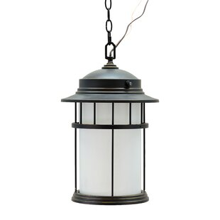 Darby Home Co Josué 1-Light Outdoor Hanging Lantern