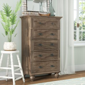 Pinellas 5 Drawer Chest by Beachcrest Home