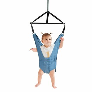 Cassiopeia Baby Door Jumper Bouncer Swing Seat By Freeport Park
