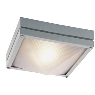 Budget Falkner 1-Light Outdoor Flush Mount By Latitude Run
