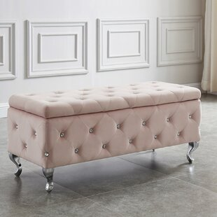 House of Hampton Quezada Tufted Storage O..