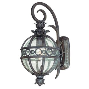Astoria Grand Weldy Outdoor Wall Lantern