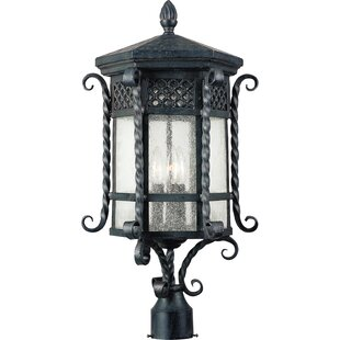 Cutlerville Outdoor 3-Light Lantern Head by Astoria Grand