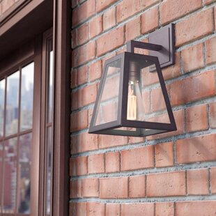 Sasha 1-Light Traditional Outdoor Wall Lantern
