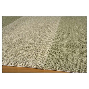 Moten Hand-Hooked Sage/Ivory Indoor/Outdoor Area Rug