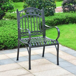 Aracely Iron Patio Dining Chair (Set of 2)