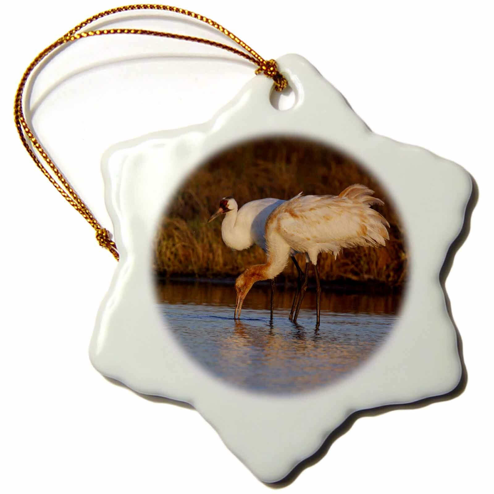 The Holiday Aisle Whooping Crane Bird Aransas Refuge Texas Usa Snowflake Holiday Shaped Ornament Wayfair