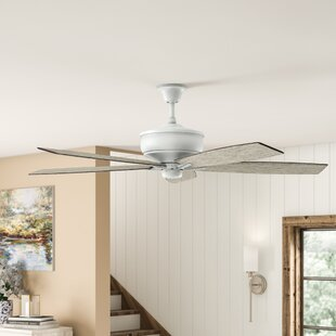 70 Julius 5 Blade Outdoor Ceiling Fan