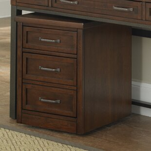 Rothbury 2-Drawer Mobile File by Three Posts
