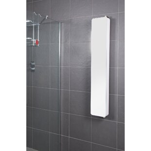 Arun 20cm X 123.2cm Surface Mount Mirror Cabinet By Belfry Bathroom