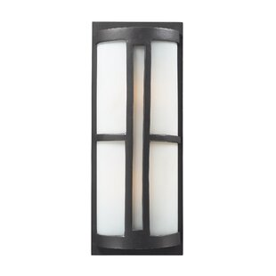 Ivy Bronx Douberly 2-Light Outdoor Flush mount