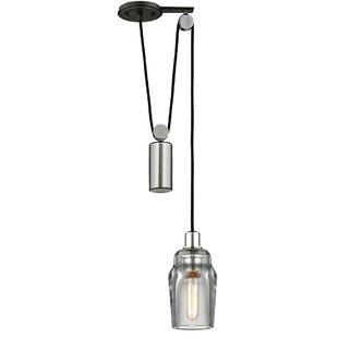 Brayden Studio Krum Pulley 1-Light Jar Pe..