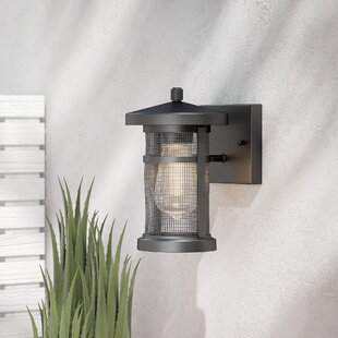 Sweeney 1-Light Outdoor Sconce