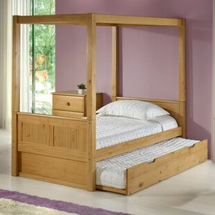 Affordable Price Oakwood Canopy Bed with Trundle by Harriet Bee Reviews (2019) & Buyer's Guide