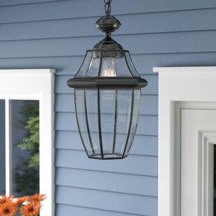 Darby Home Co Haines LED Outdoor Hanging Lantern