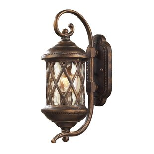 Fleur De Lis Living Whittington 1-Light Outdoor Wall Lantern