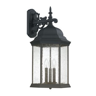 Savings Hearne 3-Light Outdoor Wall Lantern By Darby Home Co