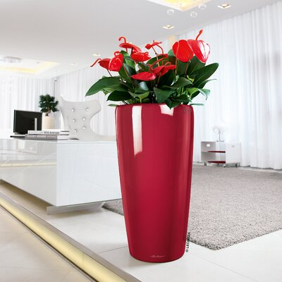Large Red Planters You Ll Love In 2019 Wayfair