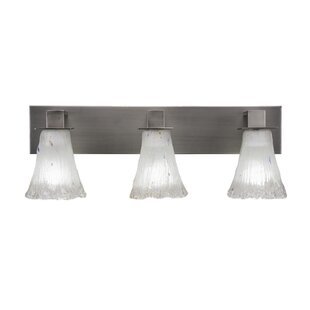 Red Barrel Studio Elburn 3-Light Graphite Vanity Light