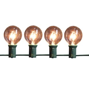 9 Ft. 10-Light Globe String Light by Penn Distributing No Copoun