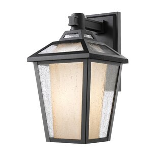 Great Price Crandell 1-Light Outdoor Wall Lantern By Williston Forge