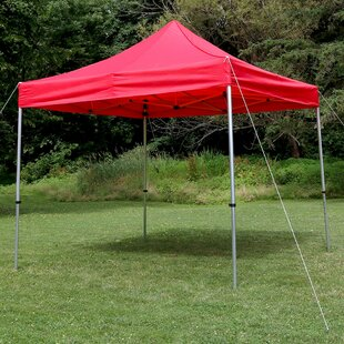 Freeport Park Amaris 10Ft.Wx10Ft.D Metal Pop-Up Canopy